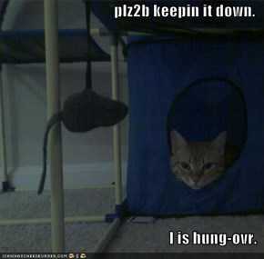 plz2b keepin it down.  I is hung-ovr.