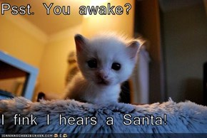 Psst. You awake?  I fink I hears a Santa!