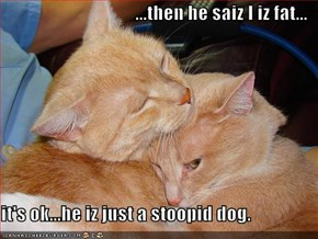...then he saiz I iz fat...  it's ok...he iz just a stoopid dog.