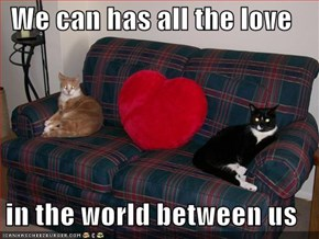 We can has all the love  in the world between us