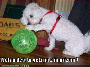 Wotz u dew to getz putz in prizum?