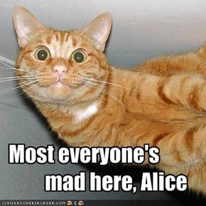 Most everyone's                mad here, Alice