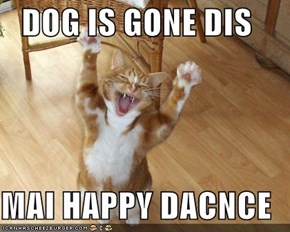 DOG IS GONE DIS  MAI HAPPY DACNCE