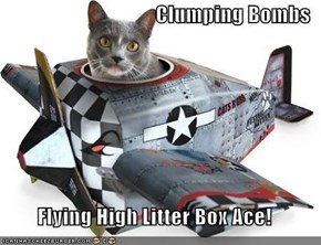 Clumping Bombs  Flying High Litter Box Ace!