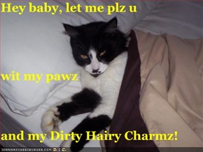 Hey baby, let me plz u wit my pawz and my Dirty Hairy Charmz!