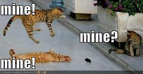 mine!                       mine? mine!