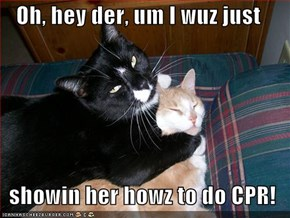 Oh, hey der, um I wuz just    showin her howz to do CPR!