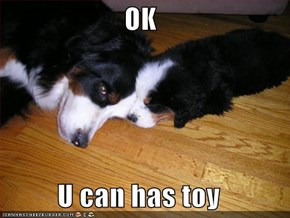 OK  U can has toy