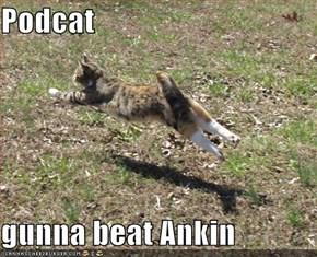 Podcat  gunna beat Ankin