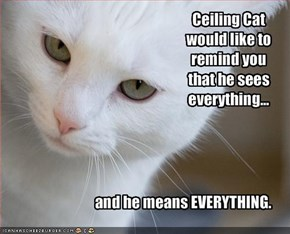 Ceiling Cat would like to remind you that he sees everything...
