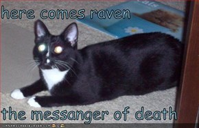 here comes raven   the messanger of death