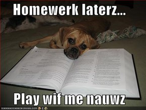 Homewerk laterz...  Play wif me nauwz