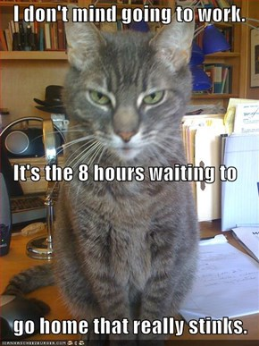 I don't mind going to work.    It's the 8 hours waiting to    go home that really stinks.