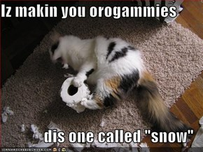 "Iz makin you orogammies  dis one called ""snow"""