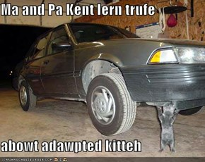 Ma and Pa Kent lern trufe  abowt adawpted kitteh