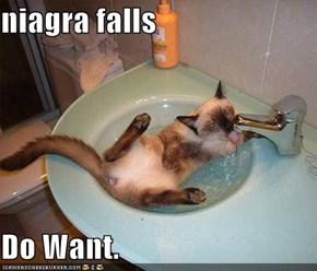 niagra falls  Do Want.