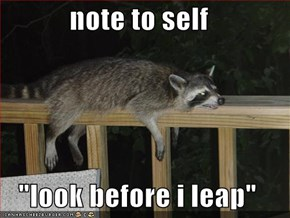 "note to self  ""look before i leap"""