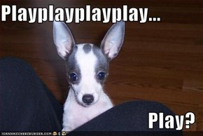 Playplayplayplay...  Play?