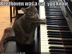 Beethoven was a cat, you know.