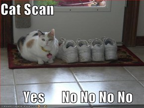 Cat Scan          Yes      No No No No