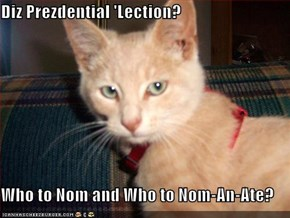 Diz Prezdential 'Lection?  Who to Nom and Who to Nom-An-Ate?