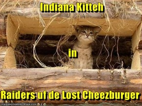 Indiana Kitteh    in Raiders uf de Lost Cheezburger