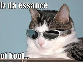 Iz da essance  of kool...