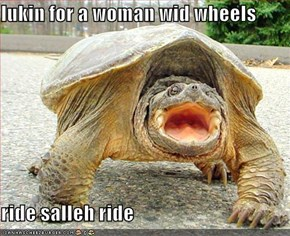 lukin for a woman wid wheels  ride salleh ride