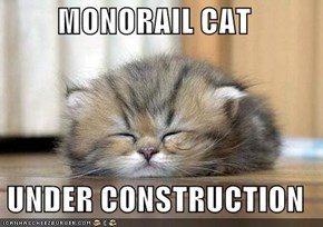 MONORAIL CAT  UNDER CONSTRUCTION