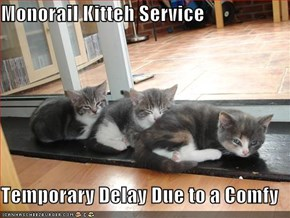 Monorail Kitteh Service  Temporary Delay Due to a Comfy