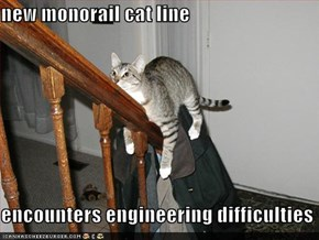 new monorail cat line  encounters engineering difficulties