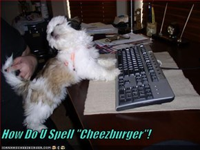 "How Do U Spell ""Cheezburger""!"