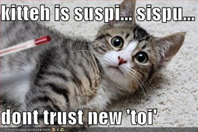 kitteh is suspi... sispu...  dont trust new 'toi'