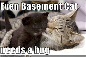 Even Basement Cat  needs a hug