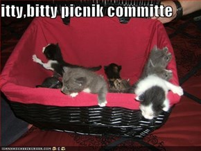 itty,bitty picnik committe