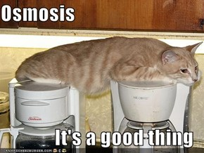 Osmosis  It's a good thing