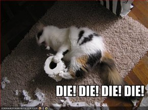 DIE! DIE! DIE! DIE!