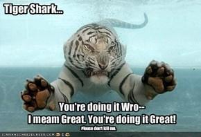 Tiger Shark...