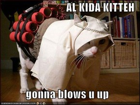 AL KIDA KITTEH  gonna blows u up