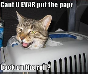 Cant U EVAR put the papr  back on the roll?