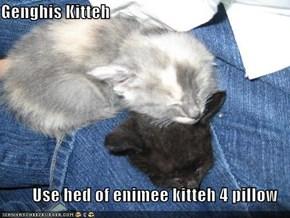 Genghis Kitteh  Use hed of enimee kitteh 4 pillow