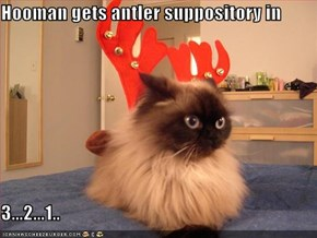 Hooman gets antler suppository in  3...2...1..