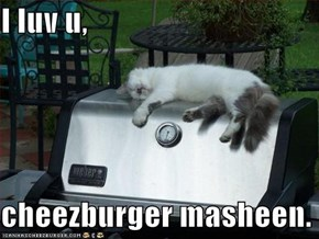I luv u,  cheezburger masheen.