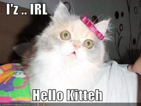 I'z .. IRL  Hello Kitteh