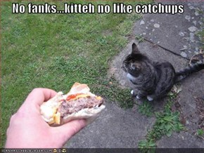 No fanks...kitteh no like catchups