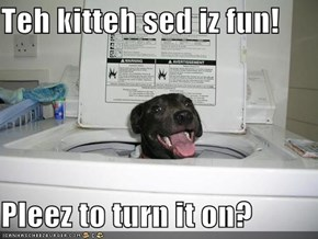 Teh kitteh sed iz fun!  Pleez to turn it on?