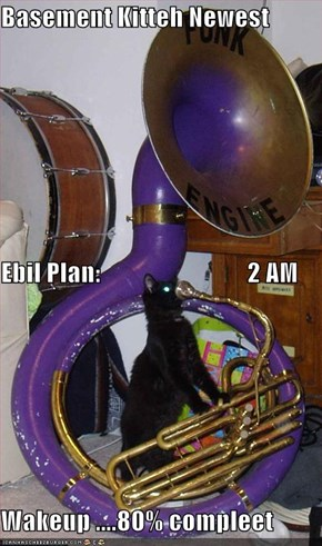Basement Kitteh Newest Ebil Plan:                             2 AM  Wakeup ....80% compleet