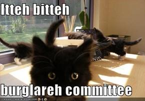 Itteh bitteh  burglareh committee