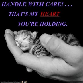 HANDLE WITH CARE! . . .