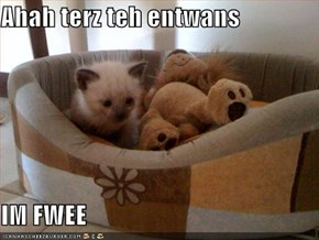 Ahah terz teh entwans  IM FWEE